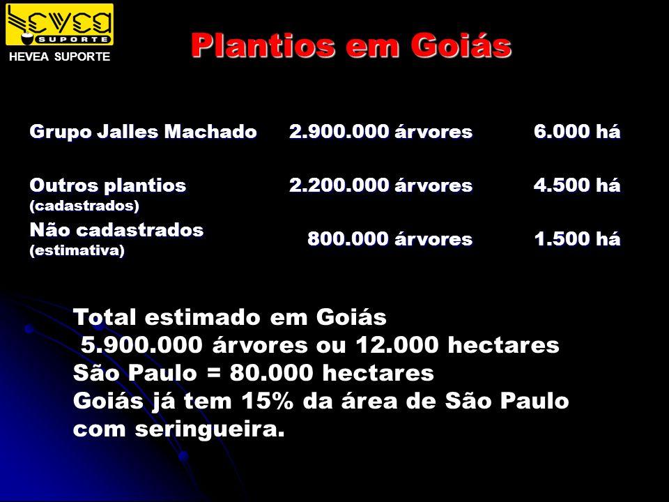 Plantios em Goiás Grupo Jalles Machado Outros plantios (cadastrados) Não cadastrados (estimativa) 2.900.000 árvores 2.200.000 árvores 800.000 árvores