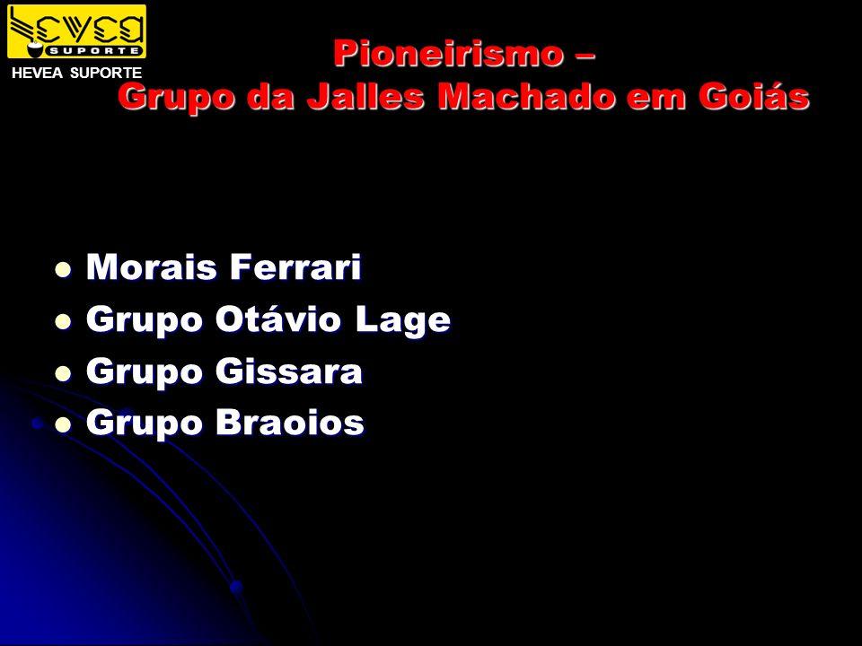 Pioneirismo – Grupo da Jalles Machado em Goiás Morais Ferrari Morais Ferrari Grupo Otávio Lage Grupo Otávio Lage Grupo Gissara Grupo Gissara Grupo Bra