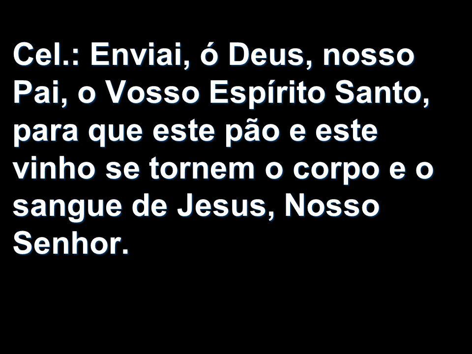 Cel.: Enviai, ó Deus, nosso Pai, o Vosso Espírito Santo, para que este pão e este vinho se tornem o corpo e o sangue de Jesus, Nosso Senhor.