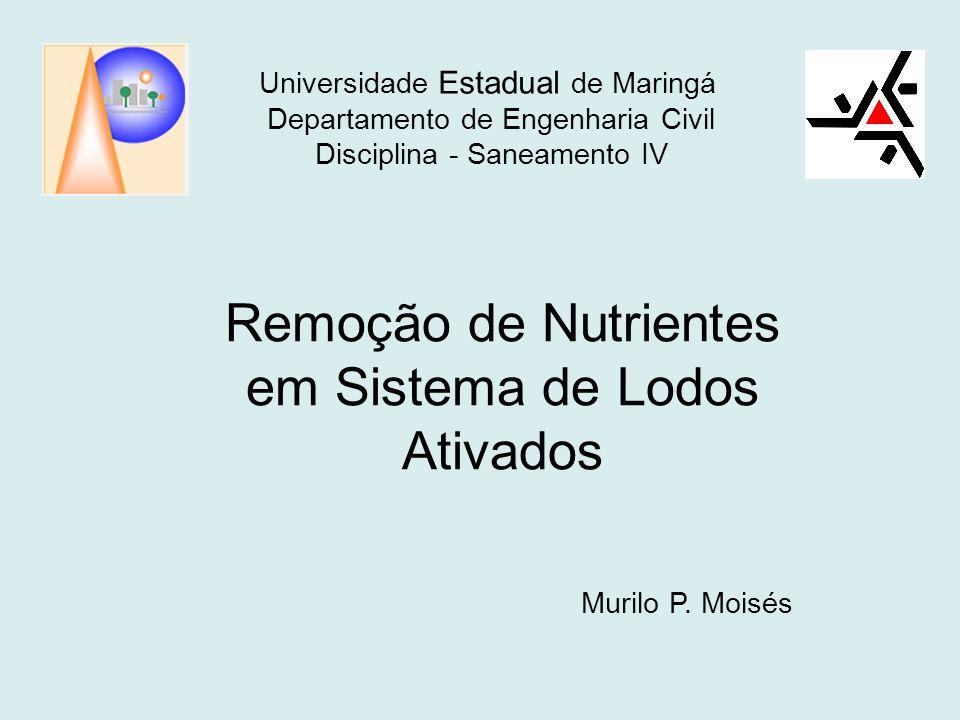 Universidade Estadual de Maringá Departamento de Engenharia Civil Disciplina - Saneamento IV Remoção de Nutrientes em Sistema de Lodos Ativados Murilo P.