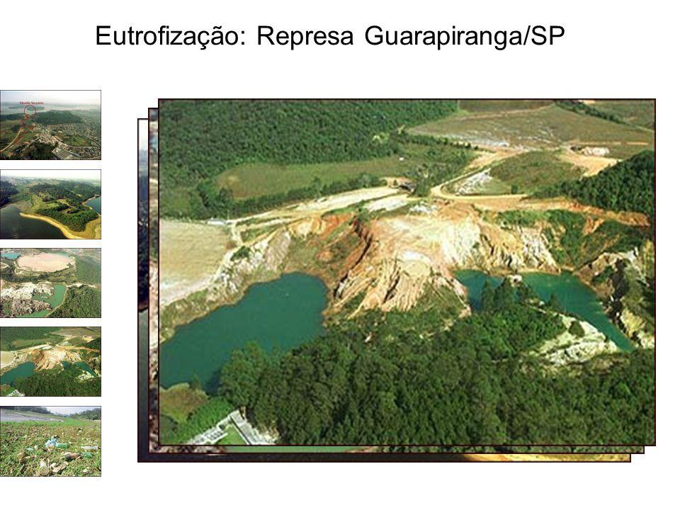 Eutrofização: Represa Guarapiranga/SP