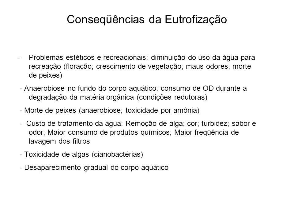 Taxa de crescimento das bactérias nitrificantes Efeito da concentração de amônia Efeito da concentração de OD no reator