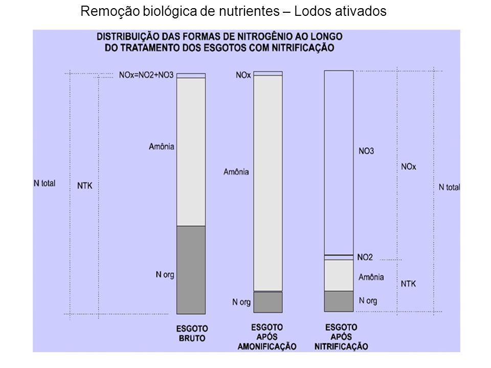 Cálculo da taxa de nitrificação Carga de amônia passível de ser oxidada Inferior ao esperado de (254), portanto a concentração de amônia final será maior que o desejado 2mg/l Calculo da concentração de amônia