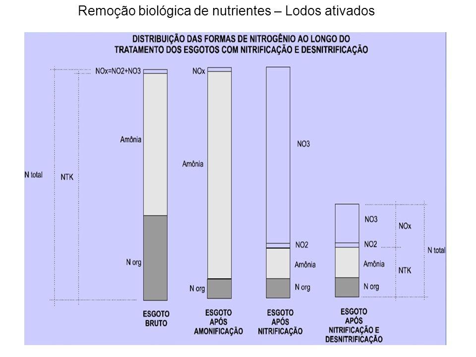 Eficiência de remoção de amônia Recirculação dos nitratos a zona anóxica Razão de recirculação do lodo = 1 = 100% Razão de recirculação interna = 3 = 300% Razão de recirculação total = 4 = 400% Taxa de desnitrificação especifica
