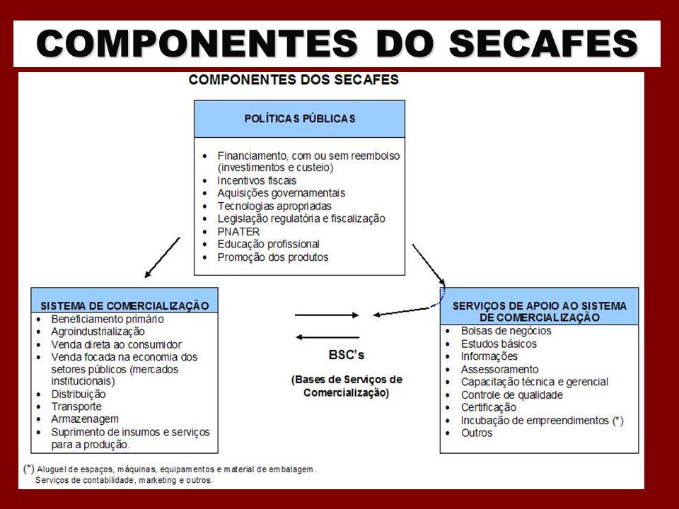 COMPONENTES DO SECAFES