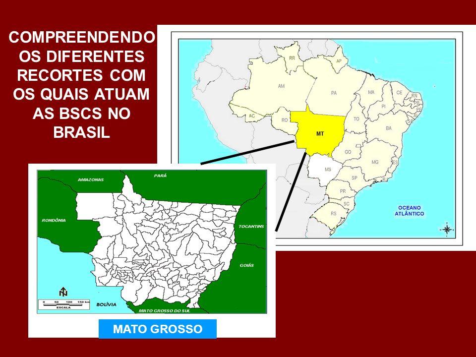 TERRITÓRIOS RURAIS Território Portal da Amazônia Território Baixo Araguaia Território Baixada Cuiabana Território Grande Cárceres Território Alto Paraguai