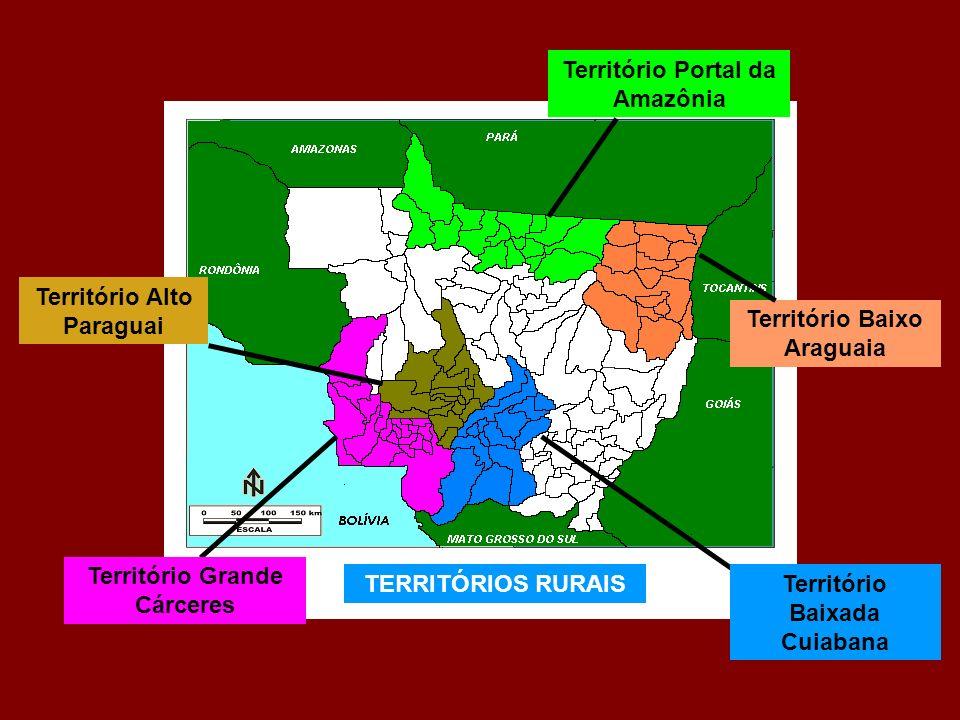 TERRITÓRIOS RURAIS Território Portal da Amazônia Território Baixo Araguaia Território Baixada Cuiabana Território Grande Cárceres Território Alto Para