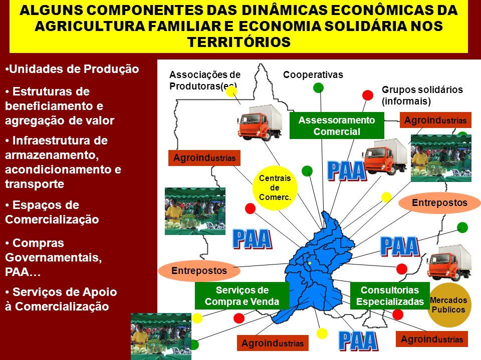 ALGUNS COMPONENTES DAS DINÂMICAS ECONÔMICAS DA AGRICULTURA FAMILIAR E ECONOMIA SOLIDÁRIA NOS TERRITÓRIOS Unidades de Produção Grupos solidários (infor