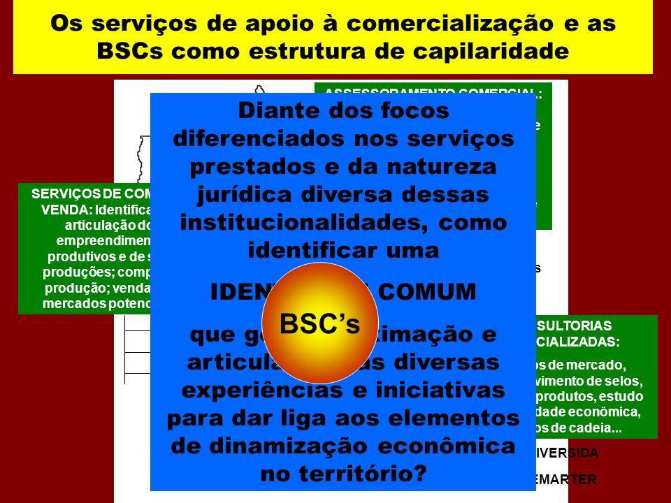 Os serviços de apoio à comercialização e as BSCs como estrutura de capilaridade SERVIÇOS DE COMPRA E VENDA: Identificação e articulação dos empreendim