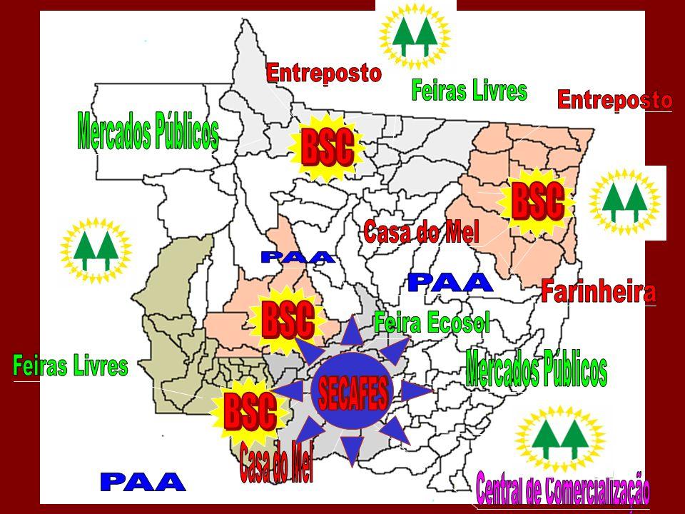 Caminhos para estruturação dos SECAFES nos estados...