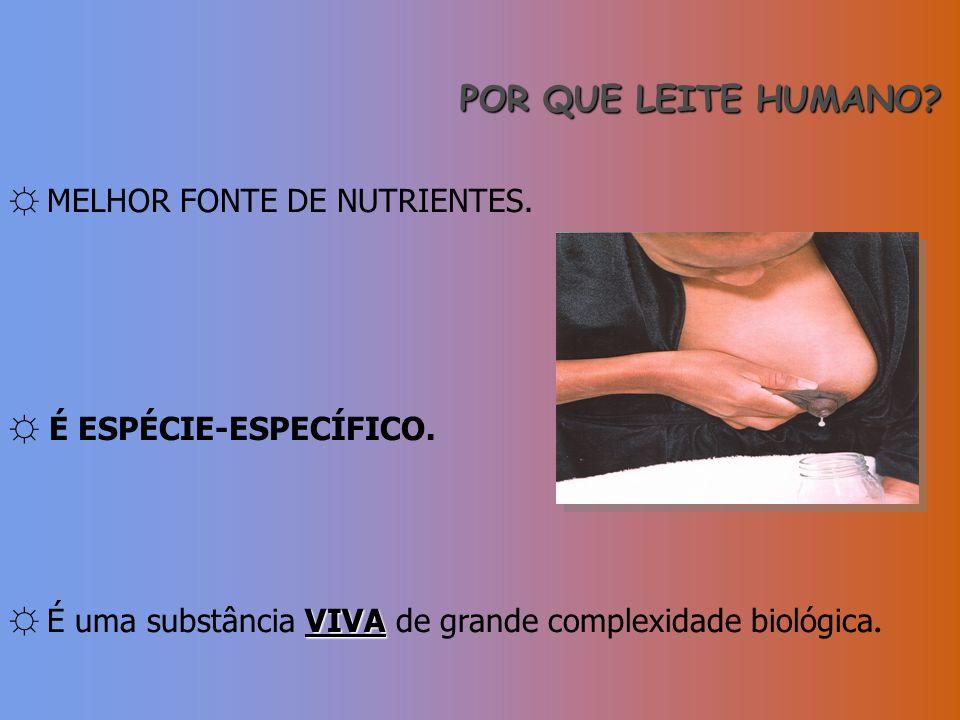 POR QUE LEITE HUMANO? MELHOR FONTE DE NUTRIENTES. É ESPÉCIE-ESPECÍFICO. VIVA É uma substância VIVA de grande complexidade biológica.