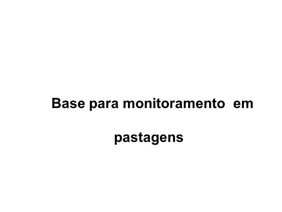 Base para monitoramento em pastagens