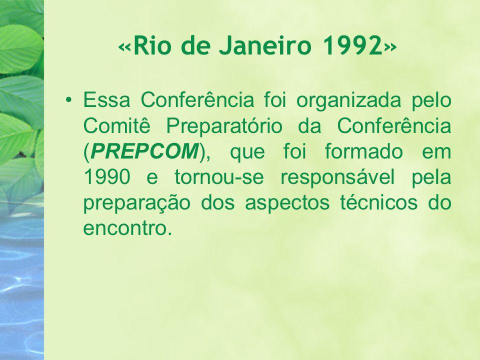 «Rio de Janeiro 1992» Essa Conferência foi organizada pelo Comitê Preparatório da Conferência (PREPCOM), que foi formado em 1990 e tornou-se responsáv