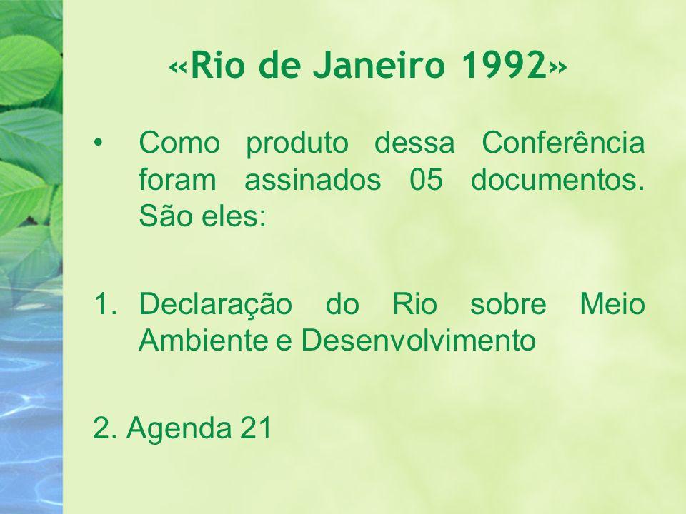 «Rio de Janeiro 1992» Como produto dessa Conferência foram assinados 05 documentos. São eles: 1.Declaração do Rio sobre Meio Ambiente e Desenvolviment