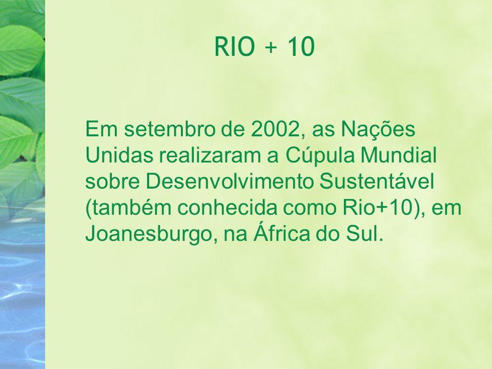 RIO + 10 Em setembro de 2002, as Nações Unidas realizaram a Cúpula Mundial sobre Desenvolvimento Sustentável (também conhecida como Rio+10), em Joanes