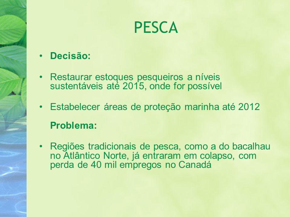 PESCA Decisão: Restaurar estoques pesqueiros a níveis sustentáveis até 2015, onde for possível Estabelecer áreas de proteção marinha até 2012 Problema