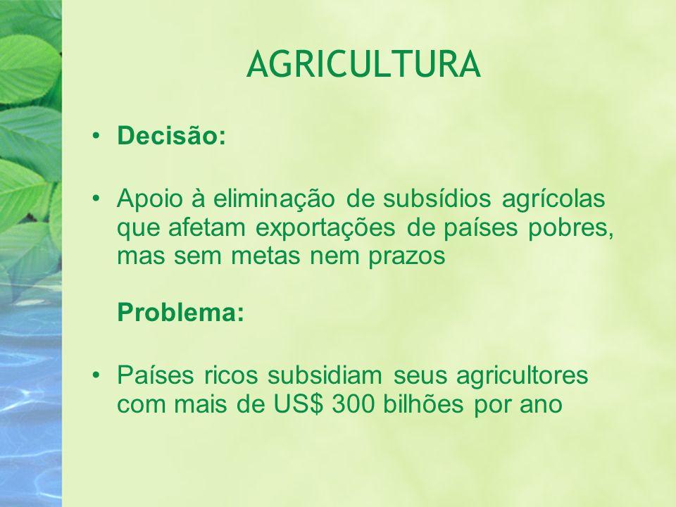 AGRICULTURA Decisão: Apoio à eliminação de subsídios agrícolas que afetam exportações de países pobres, mas sem metas nem prazos Problema: Países rico