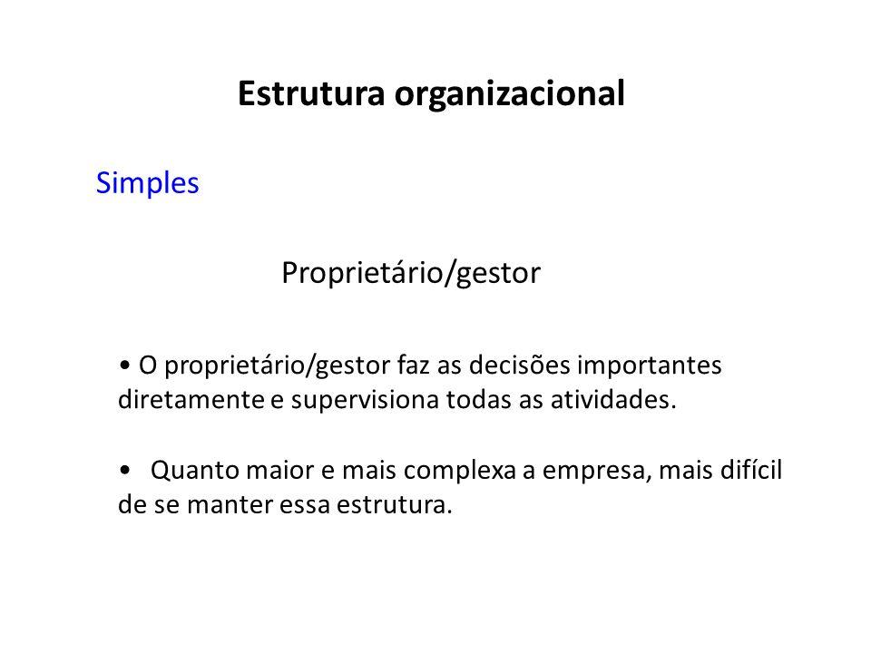 Proprietário/gestor O proprietário/gestor faz as decisões importantes diretamente e supervisiona todas as atividades. Quanto maior e mais complexa a e