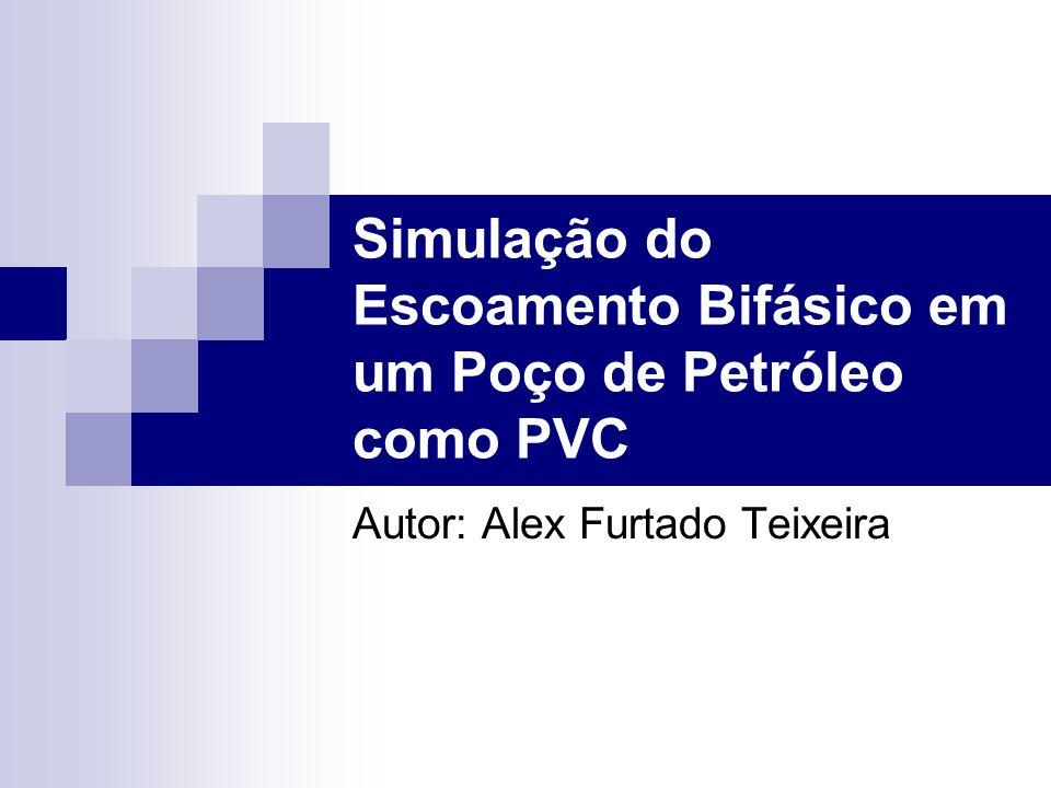 Simulação do Escoamento Bifásico em um Poço de Petróleo como PVC Autor: Alex Furtado Teixeira