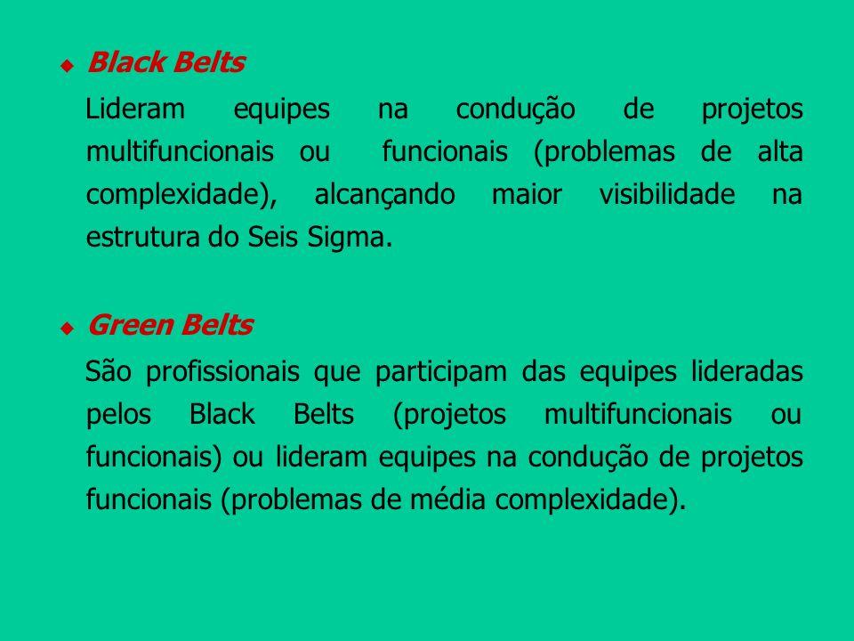 Black Belts Lideram equipes na condução de projetos multifuncionais ou funcionais (problemas de alta complexidade), alcançando maior visibilidade na e