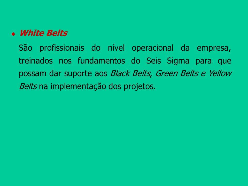 White Belts São profissionais do nível operacional da empresa, treinados nos fundamentos do Seis Sigma para que possam dar suporte aos Black Belts, Gr