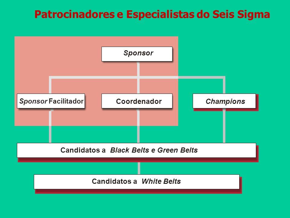 Patrocinadores e Especialistas do Seis Sigma Champions Candidatos a Black Belts e Green Belts Sponsor Coordenador Sponsor Facilitador Candidatos a Whi