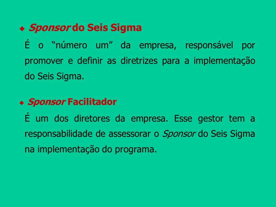 Sponsor do Seis Sigma É o número um da empresa, responsável por promover e definir as diretrizes para a implementação do Seis Sigma. Sponsor Facilitad