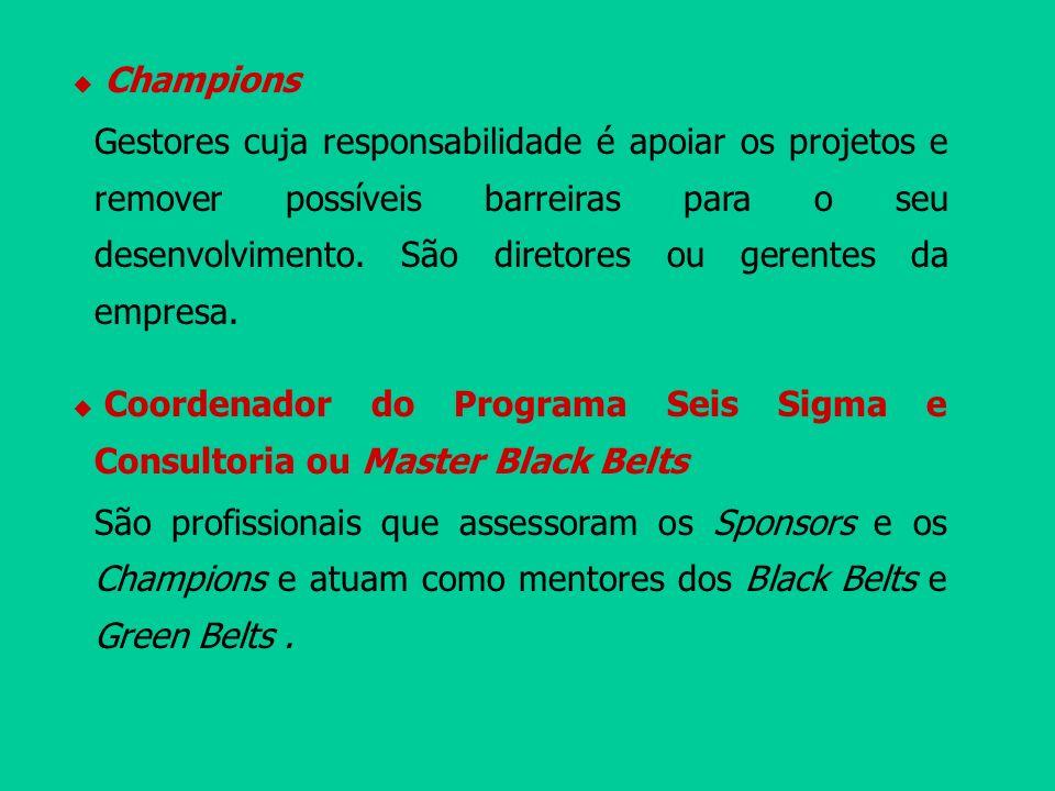 Champions Gestores cuja responsabilidade é apoiar os projetos e remover possíveis barreiras para o seu desenvolvimento. São diretores ou gerentes da e