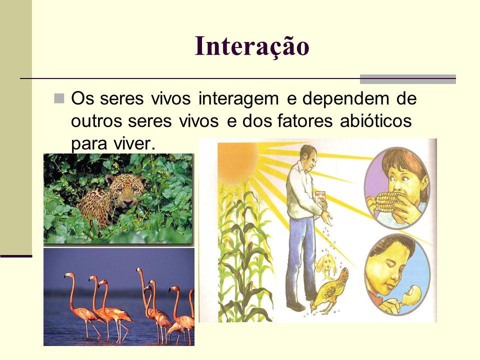 Interação Os seres vivos interagem e dependem de outros seres vivos e dos fatores abióticos para viver.