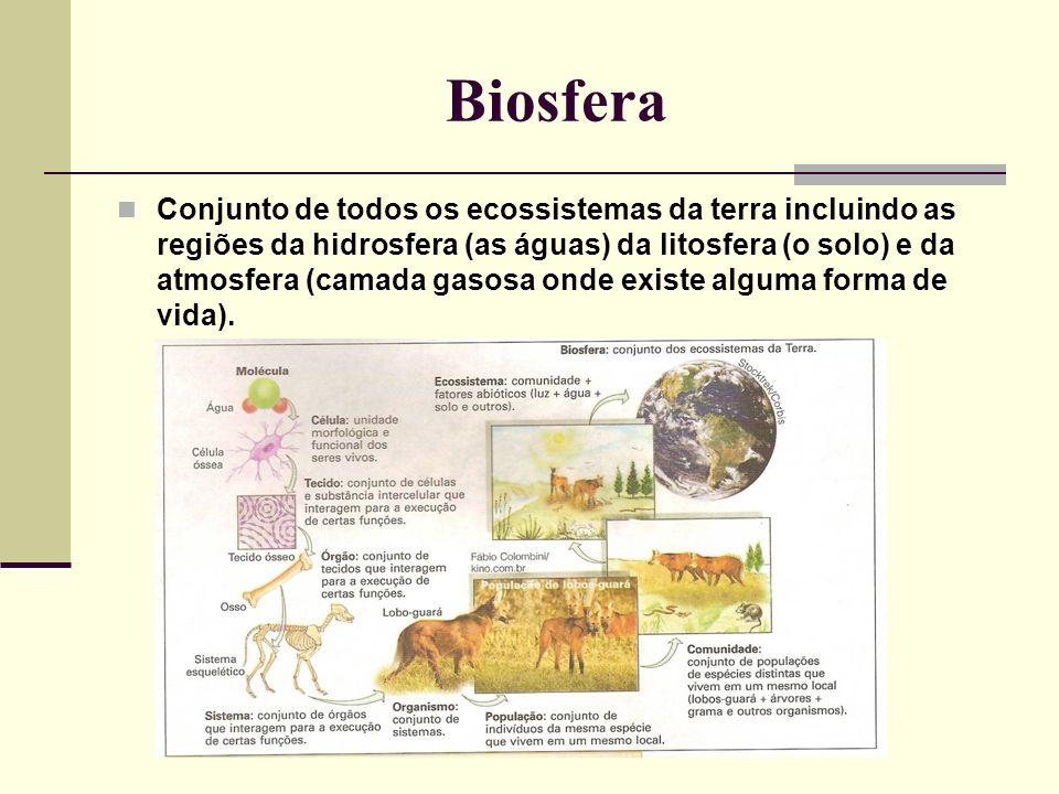 Biosfera Conjunto de todos os ecossistemas da terra incluindo as regiões da hidrosfera (as águas) da litosfera (o solo) e da atmosfera (camada gasosa