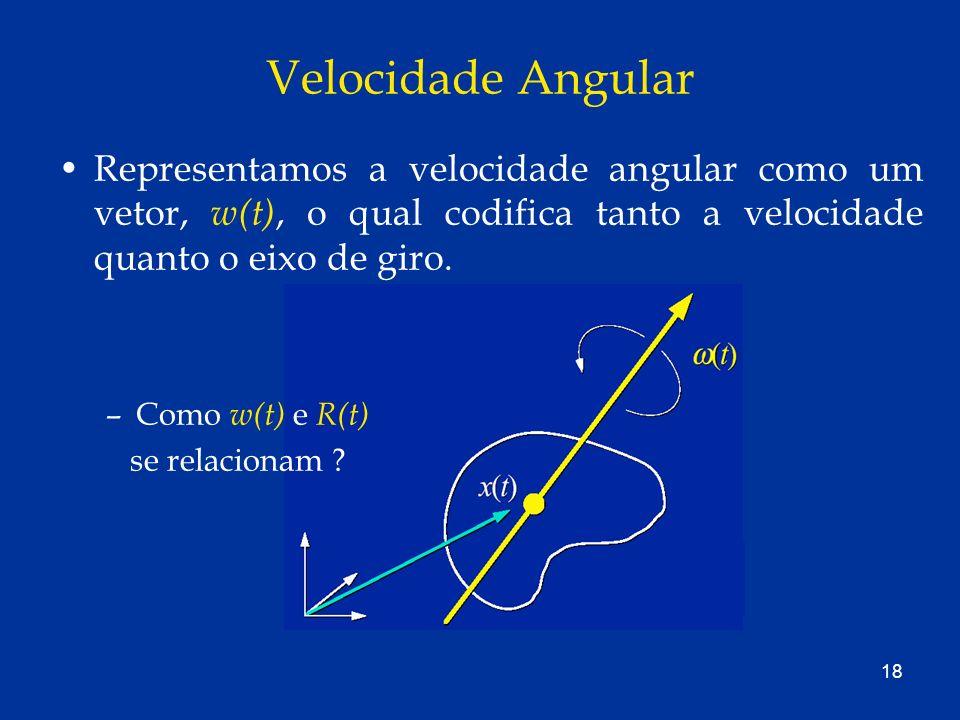 18 Velocidade Angular Representamos a velocidade angular como um vetor, w(t), o qual codifica tanto a velocidade quanto o eixo de giro. –Como w(t) e R
