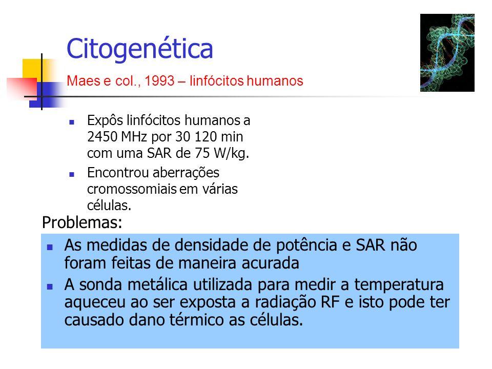 Expôs linfócitos humanos a 2450 MHz por 30 120 min com uma SAR de 75 W/kg. Encontrou aberrações cromossomiais em várias células. Citogenética Maes e c