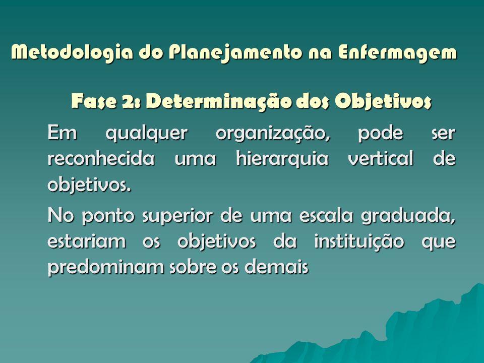 Metodologia do Planejamento na Enfermagem Fase 2: Determinação dos Objetivos Em qualquer organização, pode ser reconhecida uma hierarquia vertical de
