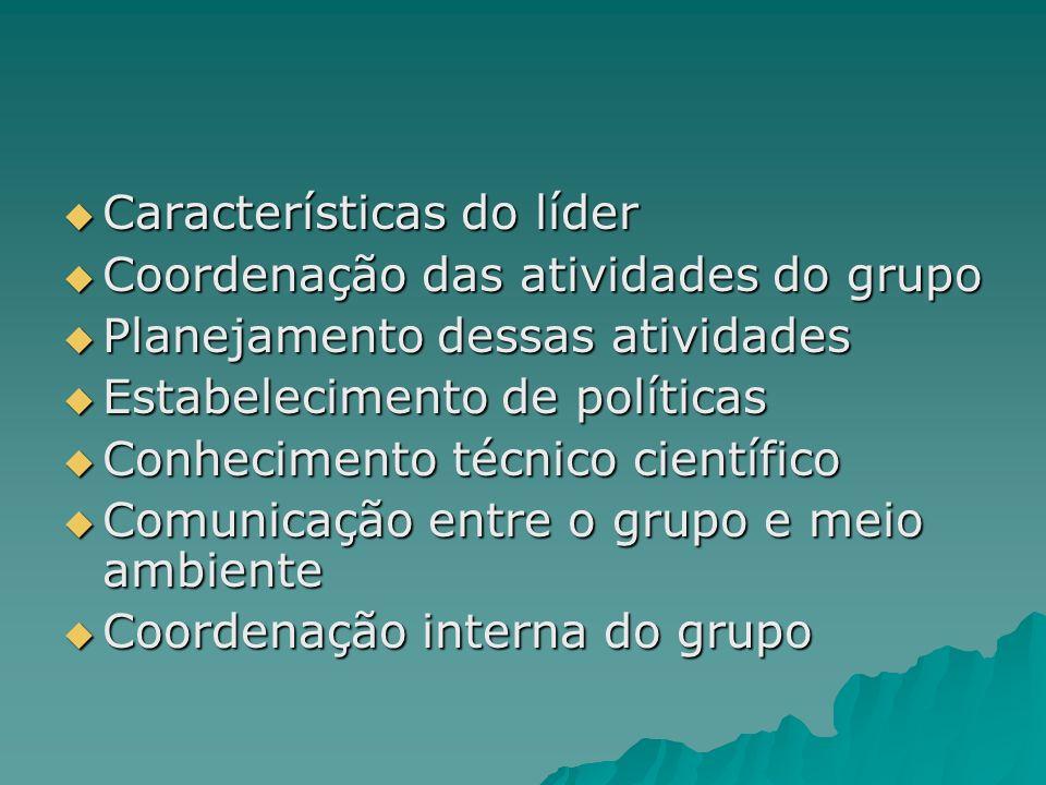 Características do líder Características do líder Coordenação das atividades do grupo Coordenação das atividades do grupo Planejamento dessas atividad
