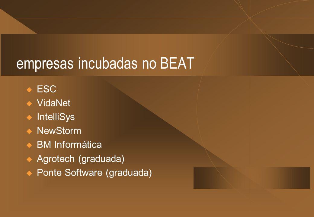 empresas incubadas no BEAT ESC VidaNet IntelliSys NewStorm BM Informática Agrotech (graduada) Ponte Software (graduada)