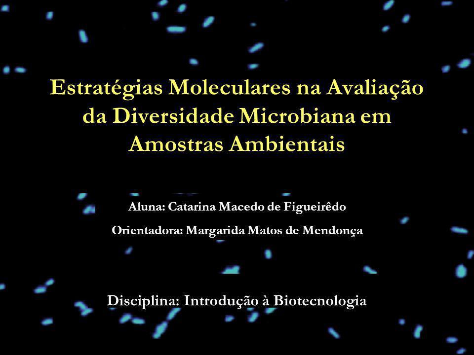 Disciplina: Introdução à Biotecnologia Estratégias Moleculares na Avaliação da Diversidade Microbiana em Amostras Ambientais Aluna: Catarina Macedo de