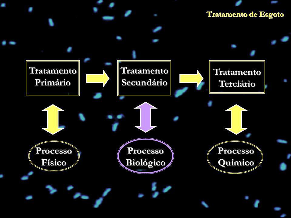 Tratamento de Esgoto Tratamento Primário Tratamento Secundário Tratamento Terciário Processo Químico Processo Biológico Processo Físico