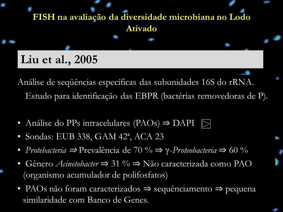 Liu et al., 2005 FISH na avaliação da diversidade microbiana no Lodo Ativado Análise de seqüências específicas das subunidades 16S do rRNA. Estudo par
