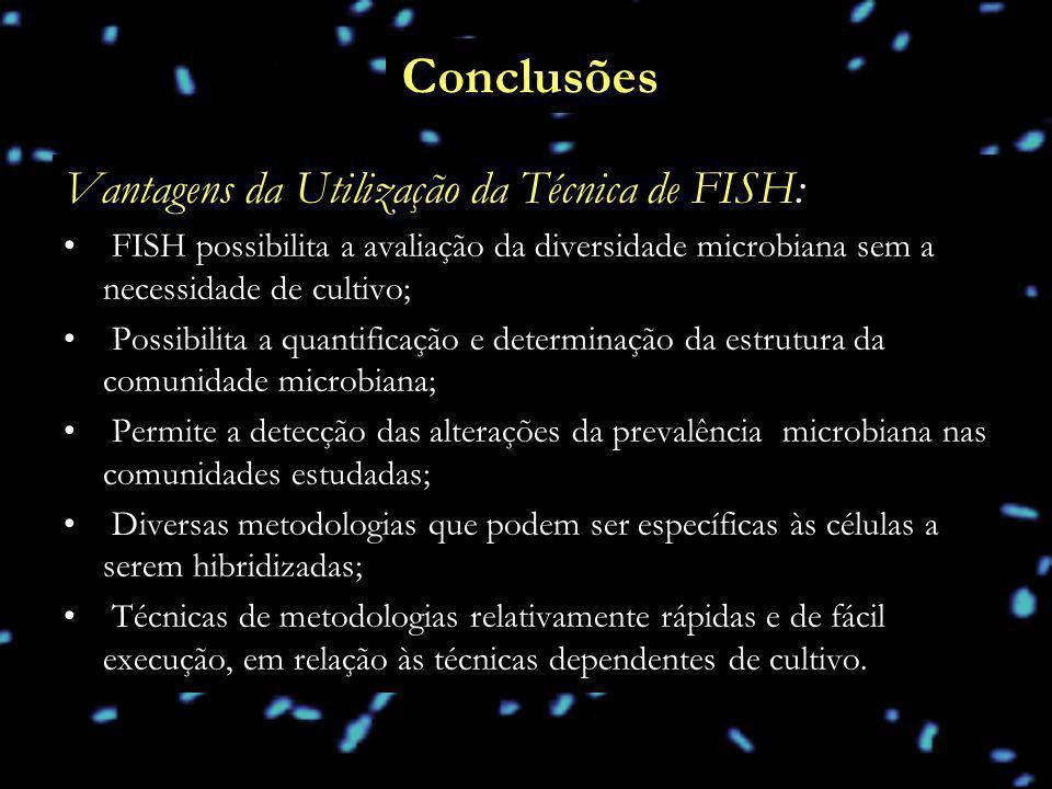 Conclusões Vantagens da Utilização da Técnica de FISH: FISH possibilita a avaliação da diversidade microbiana sem a necessidade de cultivo; Possibilit