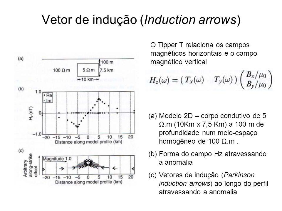 Vetor de indução (Induction arrows) (a)Modelo 2D – corpo condutivo de 5 Ω.m (10Km x 7,5 Km) a 100 m de profundidade num meio-espaço homogêneo de 100 Ω