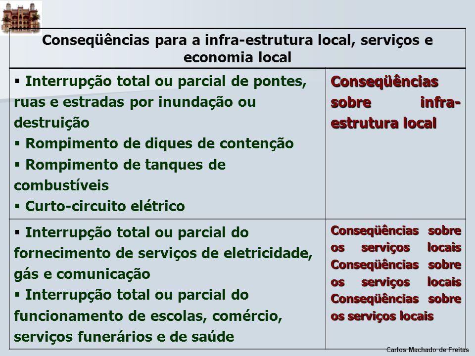 Carlos Machado de Freitas Conseqüências para a infra-estrutura local, serviços e economia local Interrupção total ou parcial de pontes, ruas e estrada