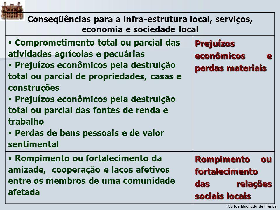 Carlos Machado de Freitas Conseqüências para a infra-estrutura local, serviços, economia e sociedade local Comprometimento total ou parcial das ativid