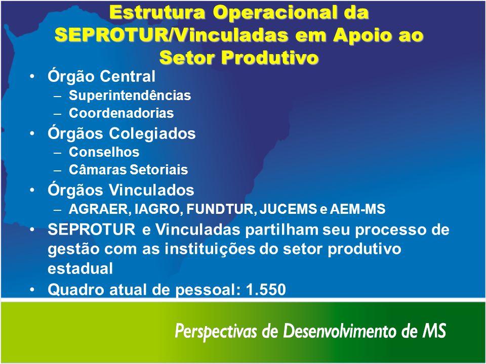 Estrutura Operacional da SEPROTUR/Vinculadas em Apoio ao Setor Produtivo Órgão Central –Superintendências –Coordenadorias Órgãos Colegiados –Conselhos