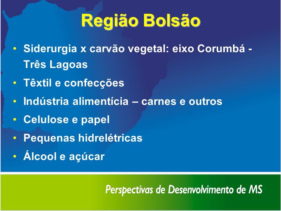 Região Bolsão Siderurgia x carvão vegetal: eixo Corumbá - Três Lagoas Têxtil e confecções Indústria alimentícia – carnes e outros Celulose e papel Peq