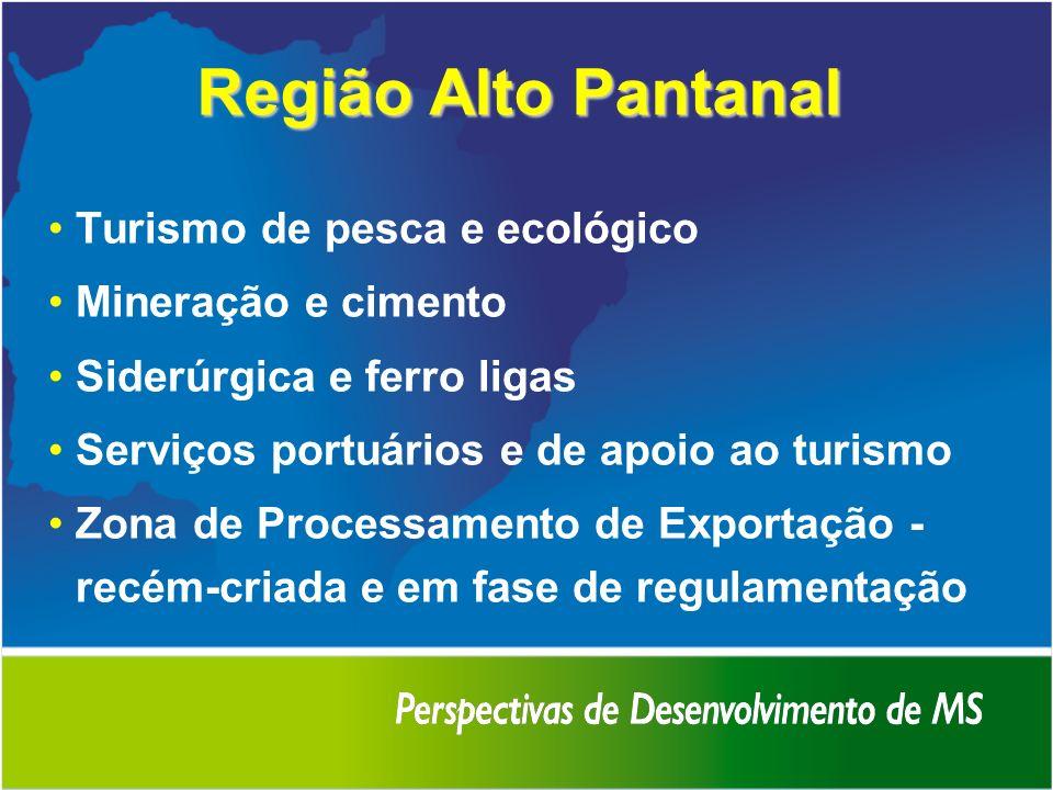 Região Alto Pantanal Turismo de pesca e ecológico Mineração e cimento Siderúrgica e ferro ligas Serviços portuários e de apoio ao turismo Zona de Proc