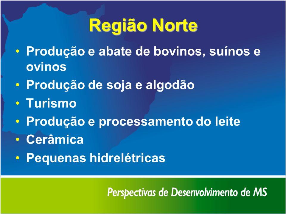 Região Norte Produção e abate de bovinos, suínos e ovinos Produção de soja e algodão Turismo Produção e processamento do leite Cerâmica Pequenas hidre