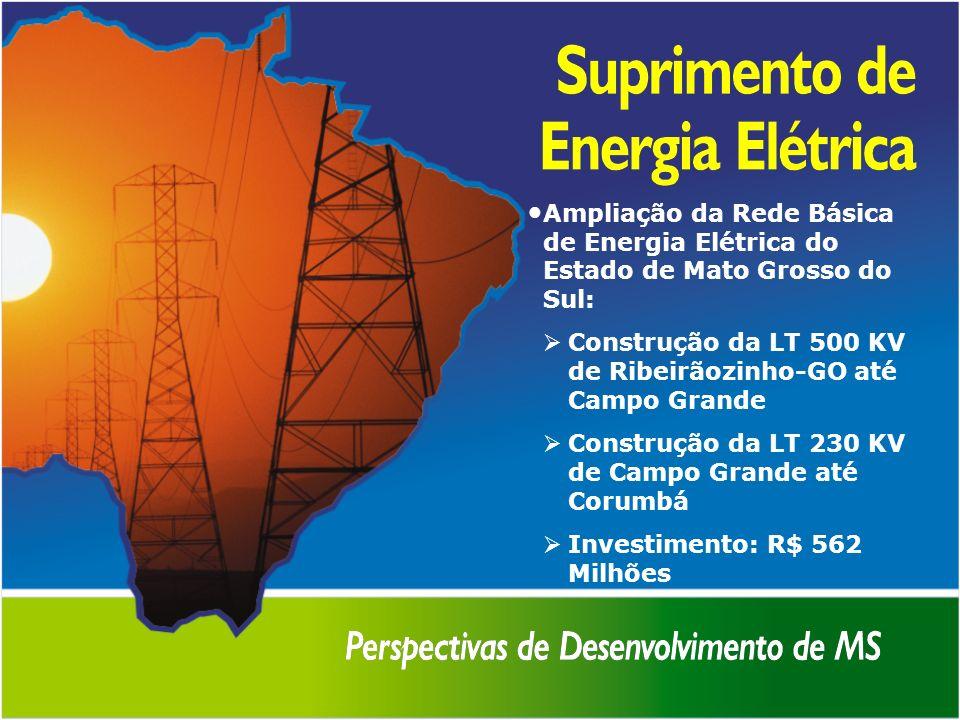 Ampliação da Rede Básica de Energia Elétrica do Estado de Mato Grosso do Sul: Construção da LT 500 KV de Ribeirãozinho-GO até Campo Grande Construção