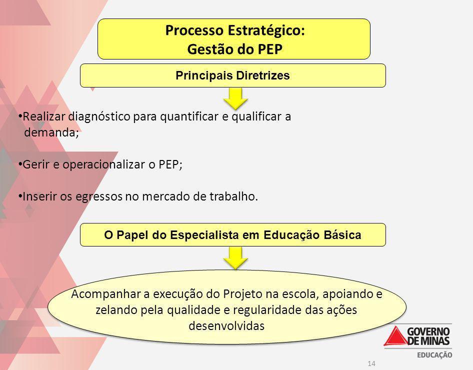 14 Processo Estratégico: Gestão do PEP Realizar diagnóstico para quantificar e qualificar a demanda; Gerir e operacionalizar o PEP; Inserir os egresso