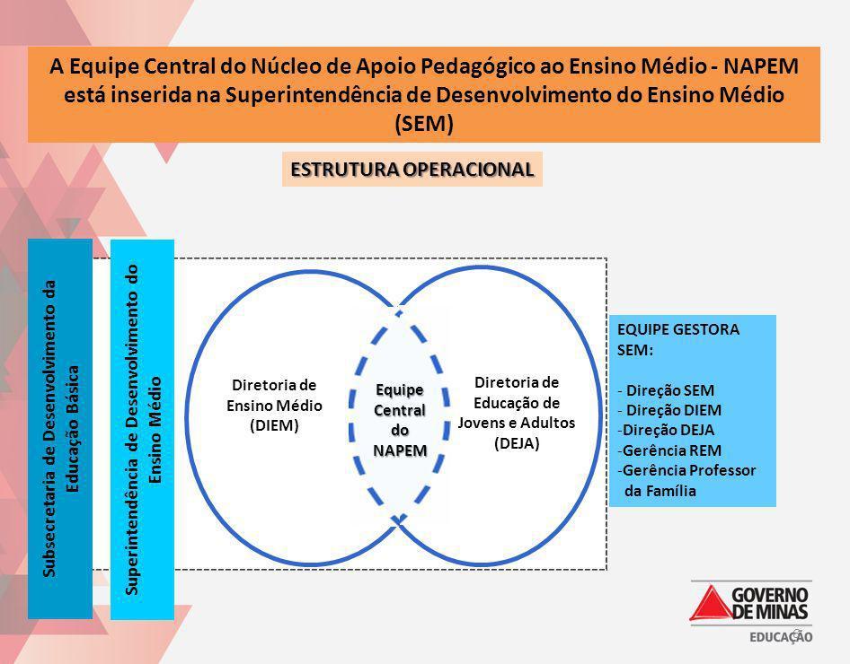 A Equipe Central do Núcleo de Apoio Pedagógico ao Ensino Médio - NAPEM está inserida na Superintendência de Desenvolvimento do Ensino Médio (SEM) ESTR