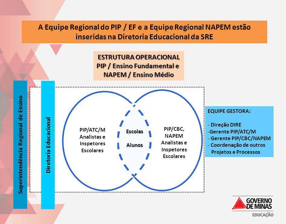 A Equipe Regional do PIP / EF e a Equipe Regional NAPEM estão inseridas na Diretoria Educacional da SRE ESTRUTURA OPERACIONAL PIP / Ensino Fundamental